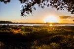 Západ slunce nad bažinou v parku Bottle Lake Forest